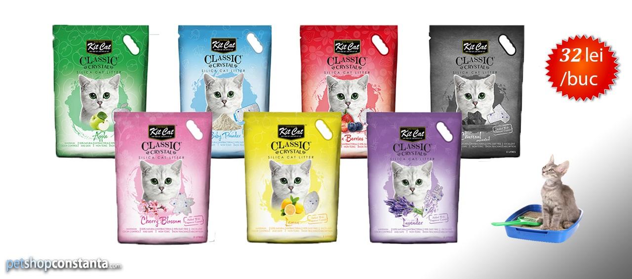 Promotie Pet shop Online Constanta