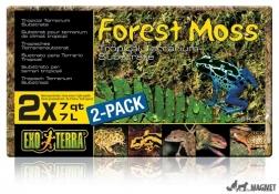 Asternut Forest Moss 500gr