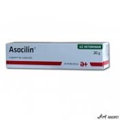 Asocilin 20g