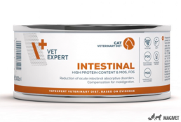 4T Veterinary DIeta Intestinal Cat 100g