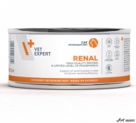 4T Veterinary Dieta Renal Cat 100g