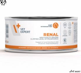 4T Veterinary Dieta Renal Cat 100g