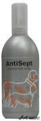 ANTISEPT 100ML