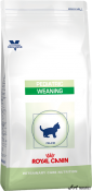 Royal Canin Weaning Cat 2Kg