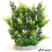 Sydeco Plante Hedge 25cm