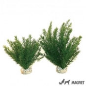 Sydeco Plante Club Moss Large