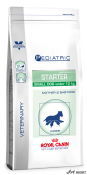 Royal Canin Starter Dog 1.5Kg