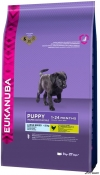 Eukanuba Puppy&Jr Large cu Pui 18kg