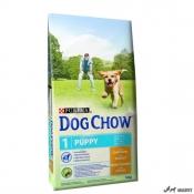 Dog Chow Puppy Pui si Orez 14Kg
