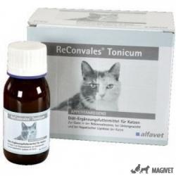 ReConvales Tonicum Cat