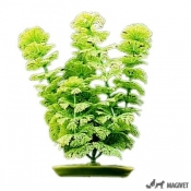 Plante Acvariu Hagen Marina Ambulia 20cm