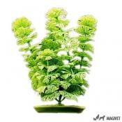 Plante Acvariu Hagen Marina Ambulia 12.5cm