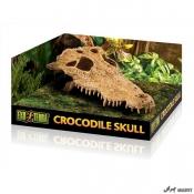 Decor Exo Terra Crocodile Skull