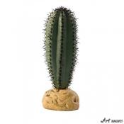 Plante Terariu Saguaro Cactus