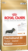 Royal Canin Teckel Junior 1,5Kg