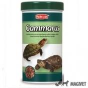 Gamarrus 1L