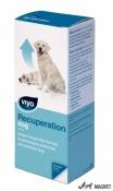Viyo Recuperation Dog 1fl