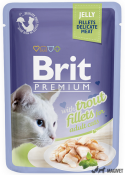 Brit Care Delicat Pastrav in Aspic 85g