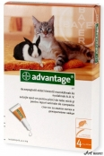 Advantage 40 Pisica/Iepure 4 Pipete